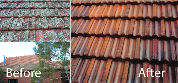 Terracotta Tiles Before & After Image